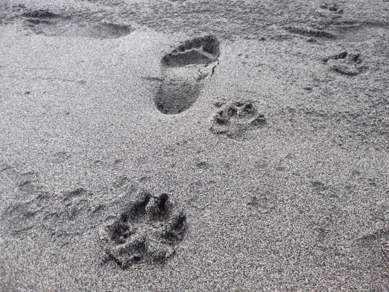 Praia no Inverno