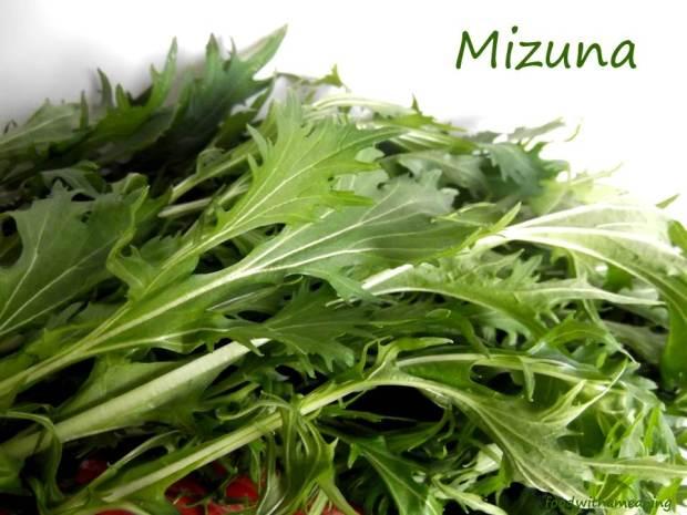 mizuna_foodwithameaning
