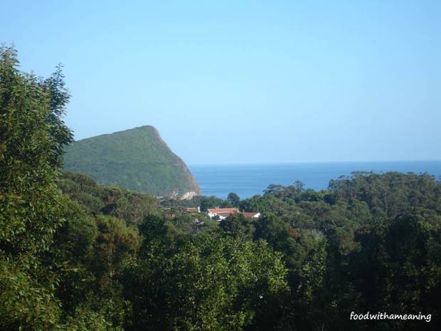 Verdura com Monte Brasil e mar ao fundo