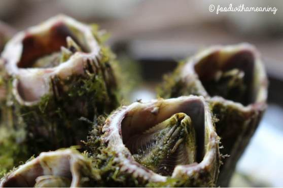 Cracas dos Açores