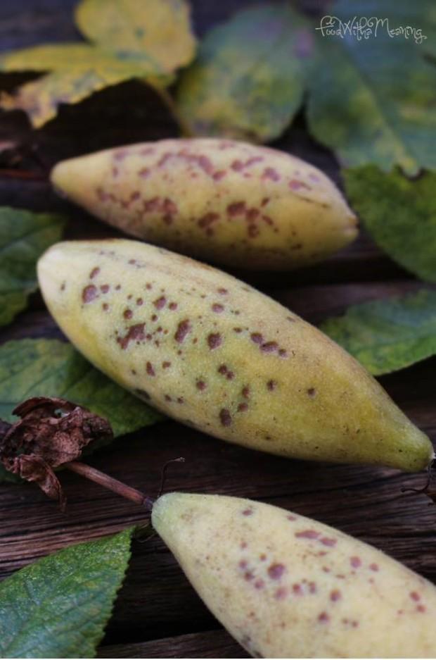 maracujá-banana_foodwithameaning