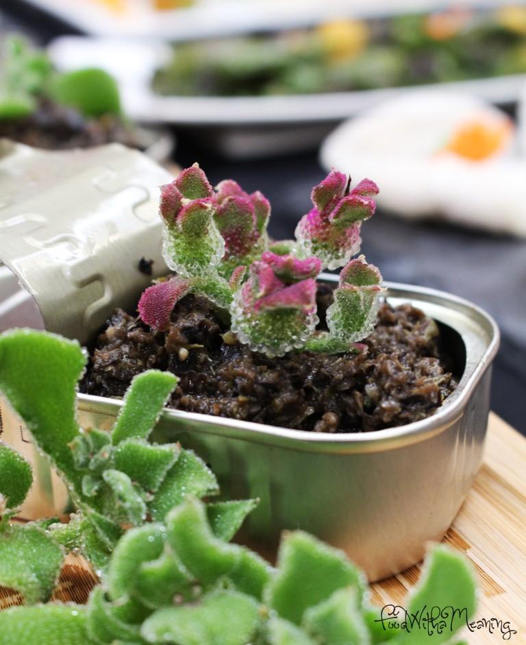 Tapenade com planta do gelo (da Quinta Biológica Bio Fontinhas)