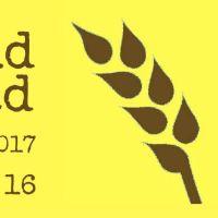 No Knead Bread em Dia Mundial do Pão
