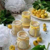 Iogurte de araçal com mel e sementes de chia